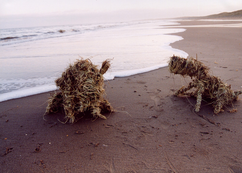 'Incoming tide' 2002