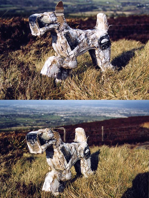 'Mountain view' 2002