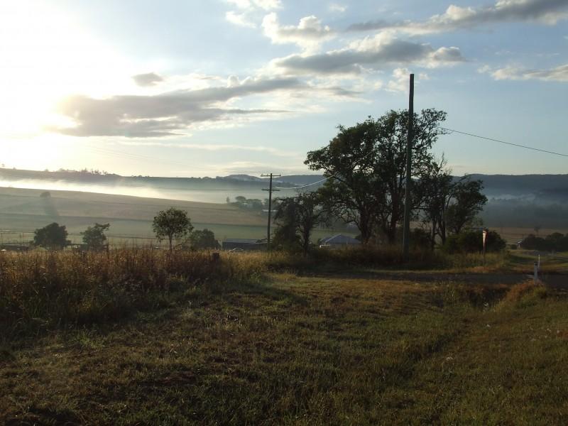 Moning mist , Queensland