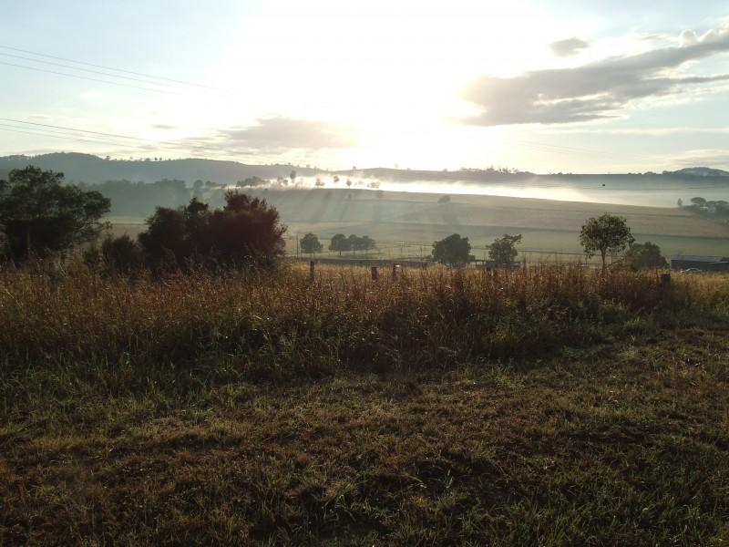 Morning mist, Queensland