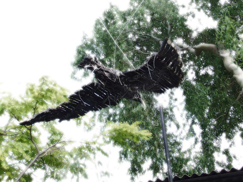 'Corvus in flight' 2010