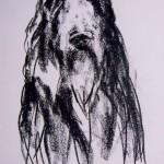 Afghan hound, charcoal